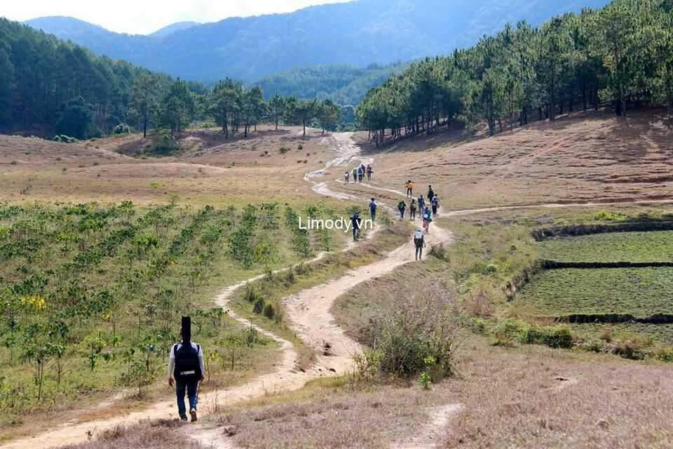 Trekking – Loại hình du lịch mạo hiểm được nhiều bạn trẻ yêu thích