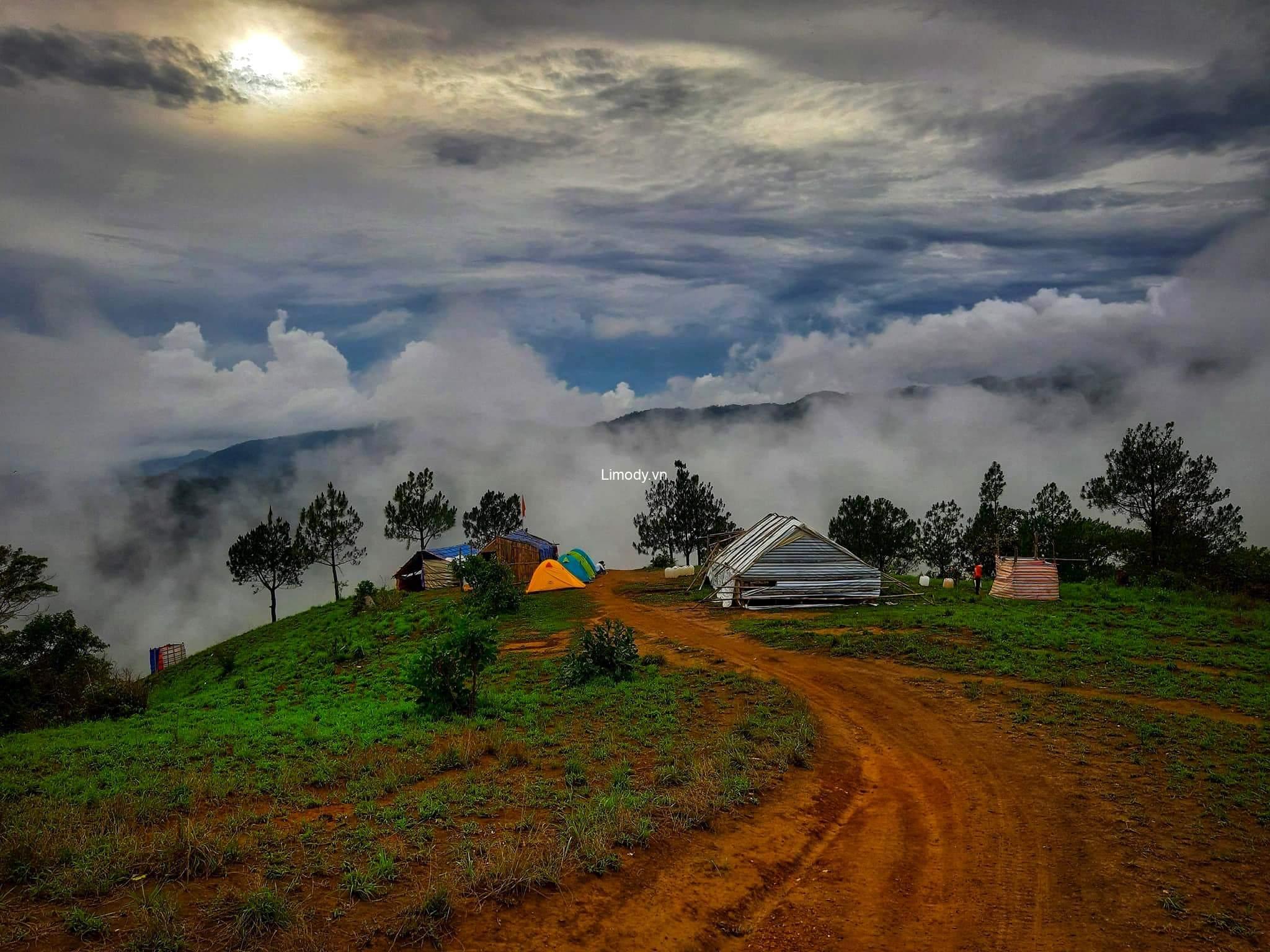 Trekking Tà Năng Phan Dũng mùa nào đẹp nhất trong năm?