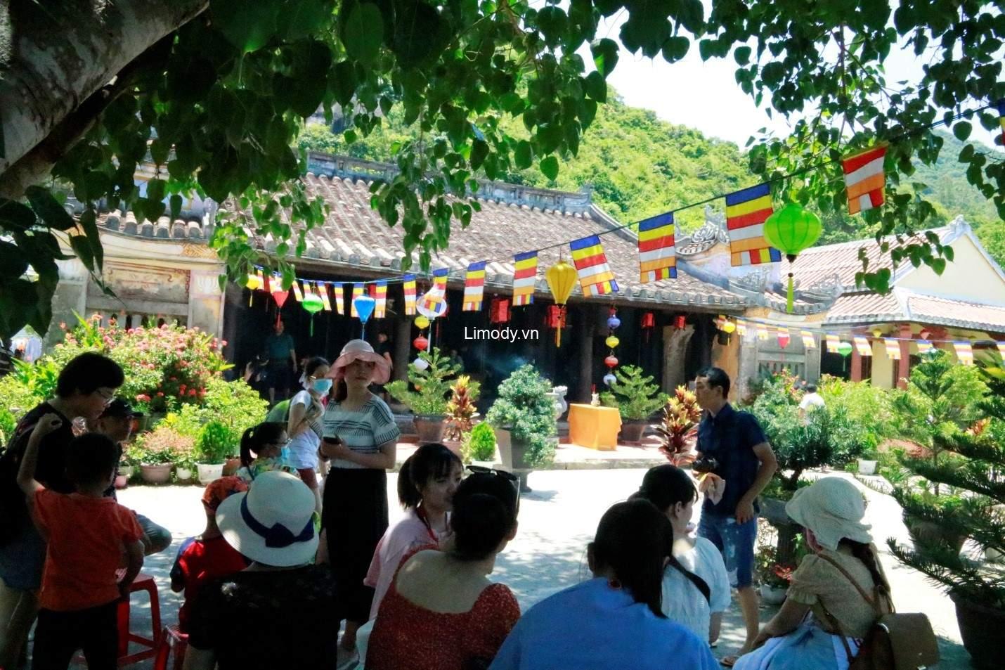 Tour Cù Lao Chàm Hội An 1 ngày giá rẻ: Thông tin chi tiết nhất từ A-Z
