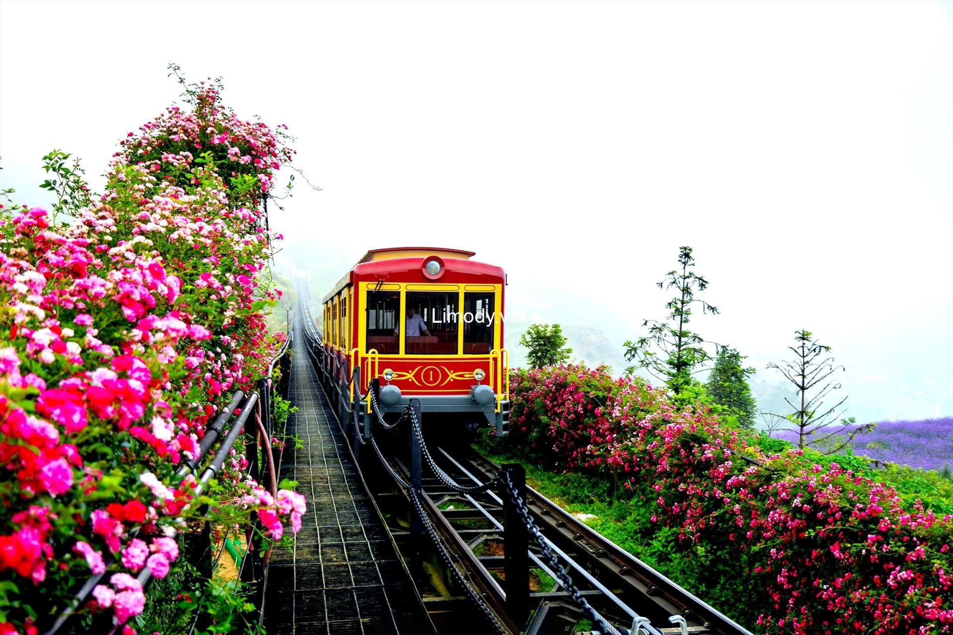 Vé tàu đi Sapa Hà Nội: Bảng giá chi tiết và hướng dẫn đặt vé qua mạng