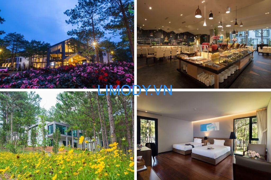 Top 30 Resort Đà Lạt giá rẻ view đẹp có hồ bơi từ 3-4-5 sao đáng nghỉ dưỡng